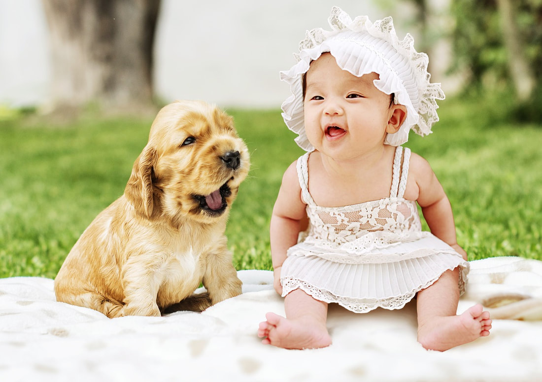 If you have weighed the pros and cons and opted to own a pet, introduce it slowly to your kids. Start off by speaking to them beforehand and letting them know that touching, petting, and playing with a dog or cat is not a right, but a privilege. It has to be done on the pet's terms, because we cannot reason with a pet in the same way we can with a person.